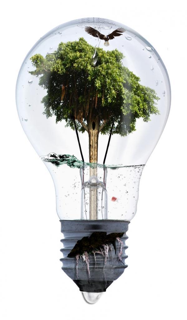 lampada_criativa.jpg