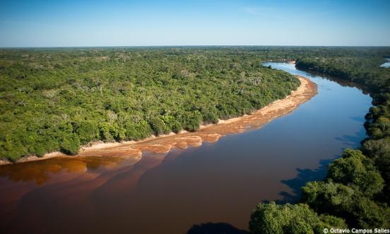 Resultado de imagem para rio negro