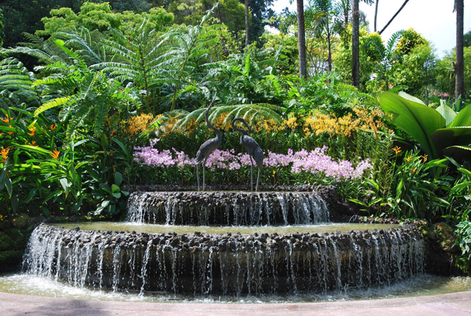 um dos mais bonitos jardins botânicos do mundo, o jardim botanico de