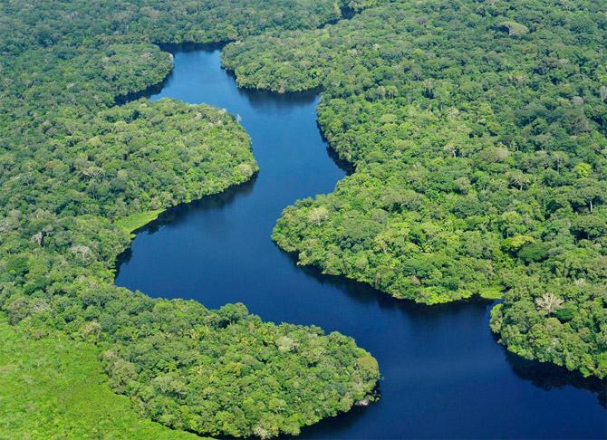 Brasil avança na conservação da Amazônia, diz relatório norueguês Floresta_amazonica